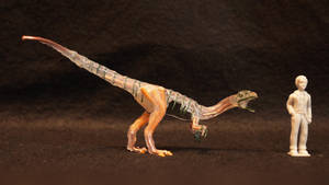 ''Elaphrosaurus'' sp.