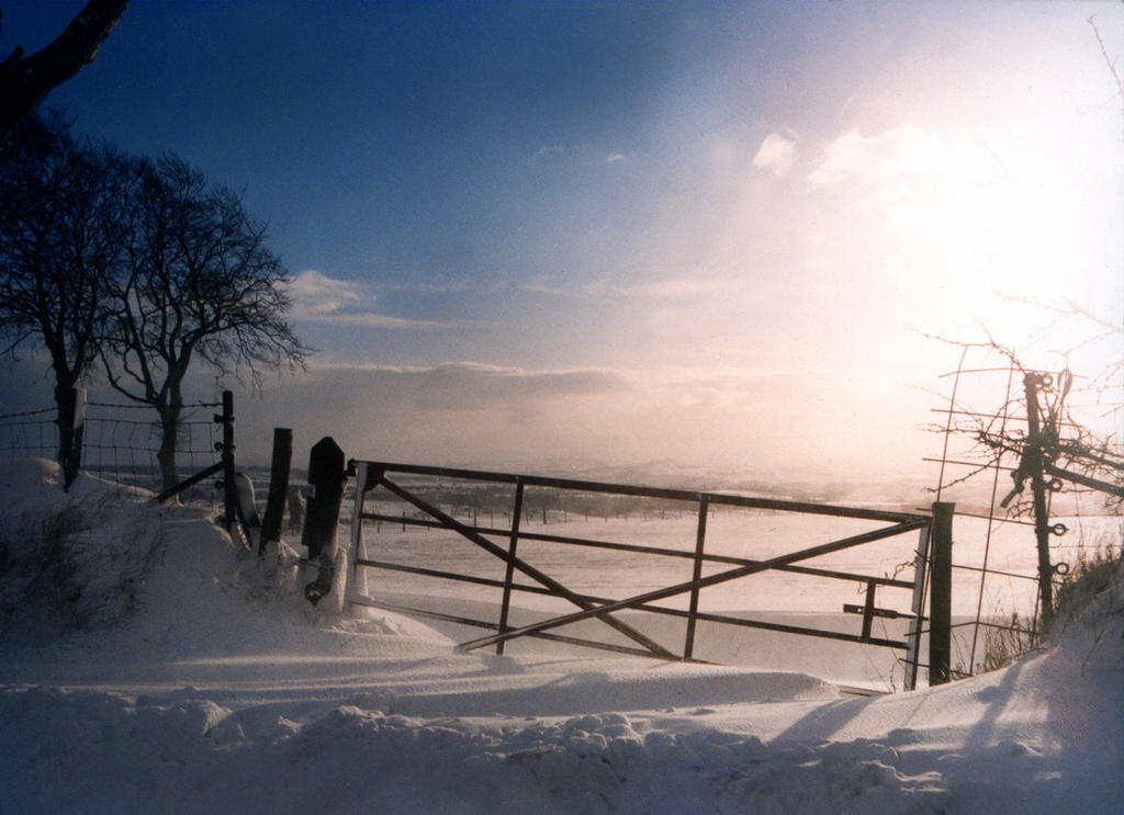 Winter's Gate by Jamie-MacArthur