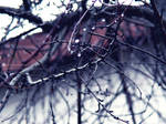 frozen veins by FromAshesToEden