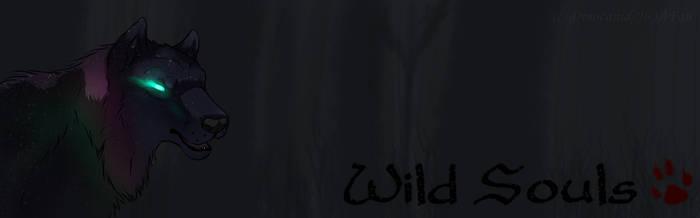 Wild Souls Banner 2.0