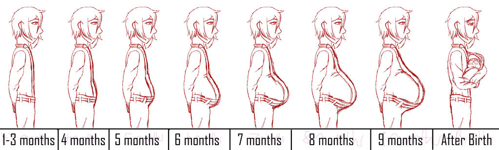 pregnant belly chart: Pregnancy progression chart single by oogies wife67 on deviantart