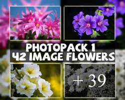 Photopack #1 - 42 image flowers by xx3hanhan