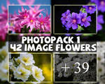 Photopack #1 - 42 image flowers
