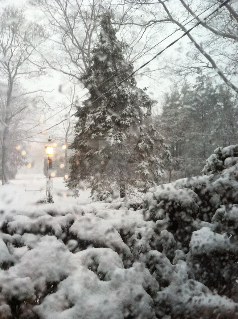 Lovely Snow by AnimeLeaderVI
