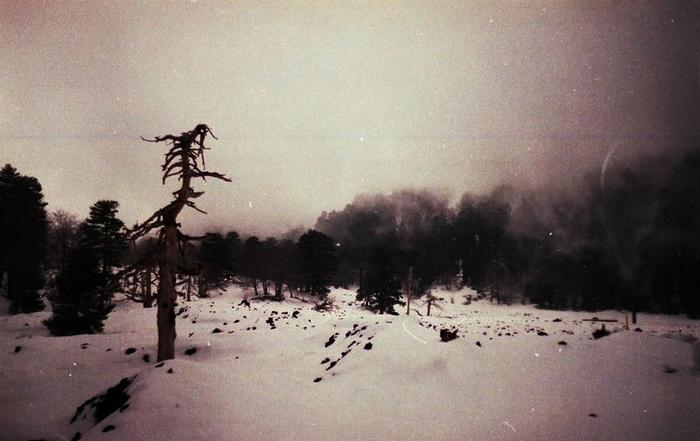 Cold by invisigoth88