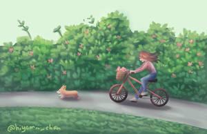 A Bike Ride Through The Park