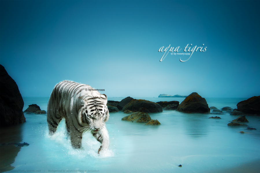 Aqua Tigris by tweety1999