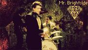 Mr. Brightside - Animated by geyl