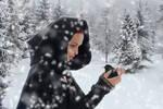 Winter Companion