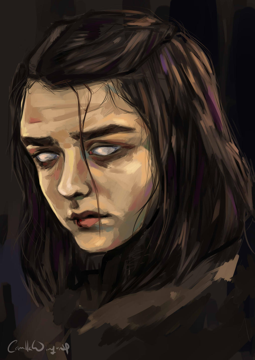 My Name Is Arya Stark And I M Going Home