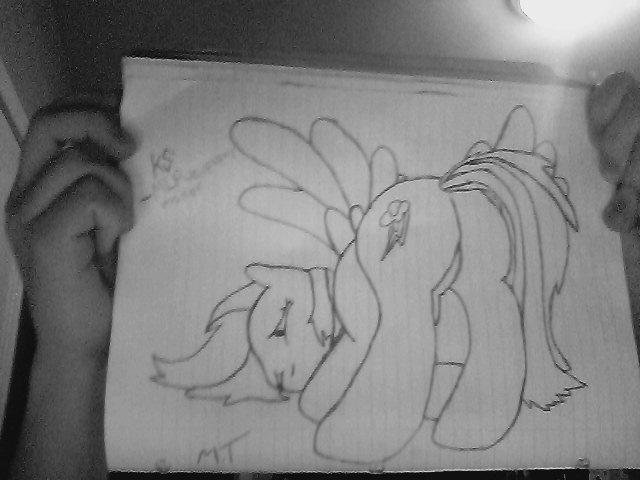 Rainbow Dash dafuq did I draw