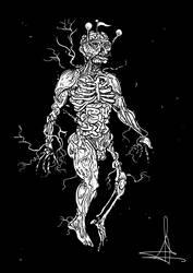 Anatoma by AcherontiaDomus