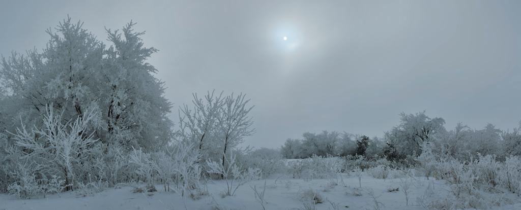 Cold Sun by Anachronist84