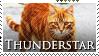 Thunderstar Stamp