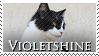 Violetshine Stamp by VampsStock