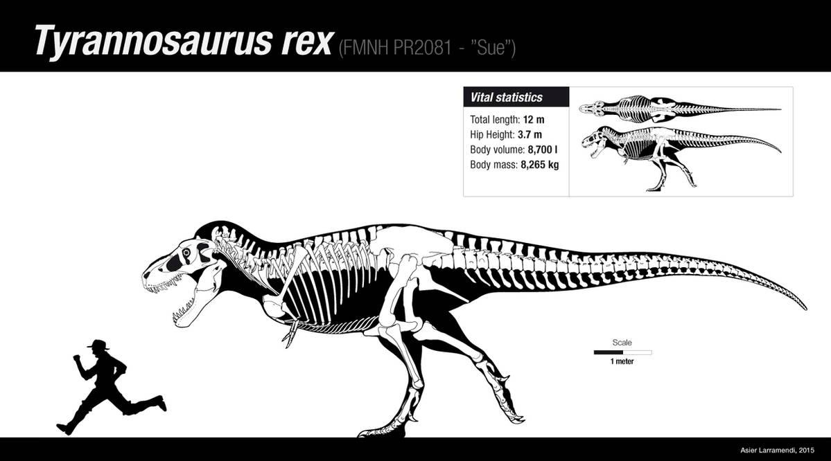 The king T. rex by Asier-Larramendi