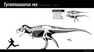 The king T. rex