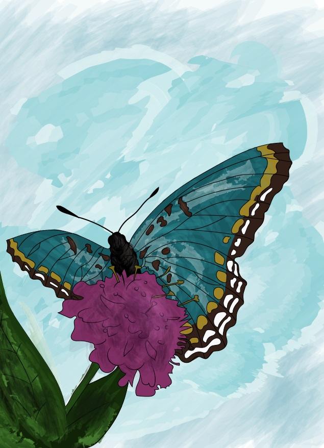 Butterfly by AanZku
