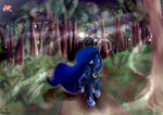 Luna's night stroll