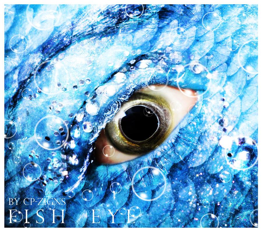 -fish.eye-