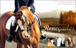 Renegades by poloart-pb
