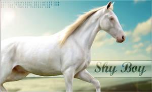 Shy Boy by poloart-pb