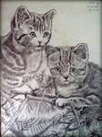 Pussies Pencil sketch