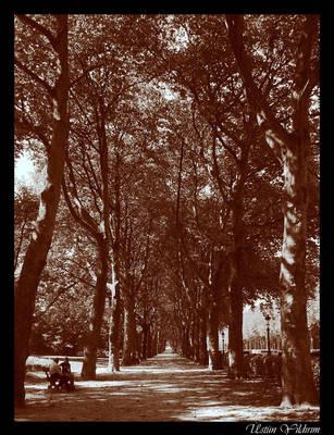 The Road of Eternity by DienekeSart
