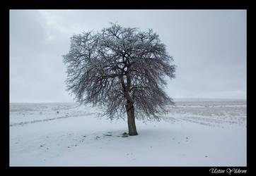 Alone by DienekeSart
