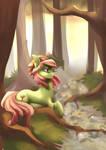 Tree Hugger (Timelapse)