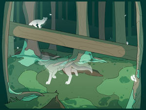 [Aug] Forest Spirits