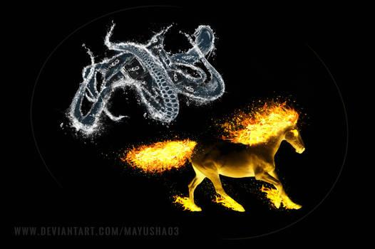 Firehorse Wateroctopus