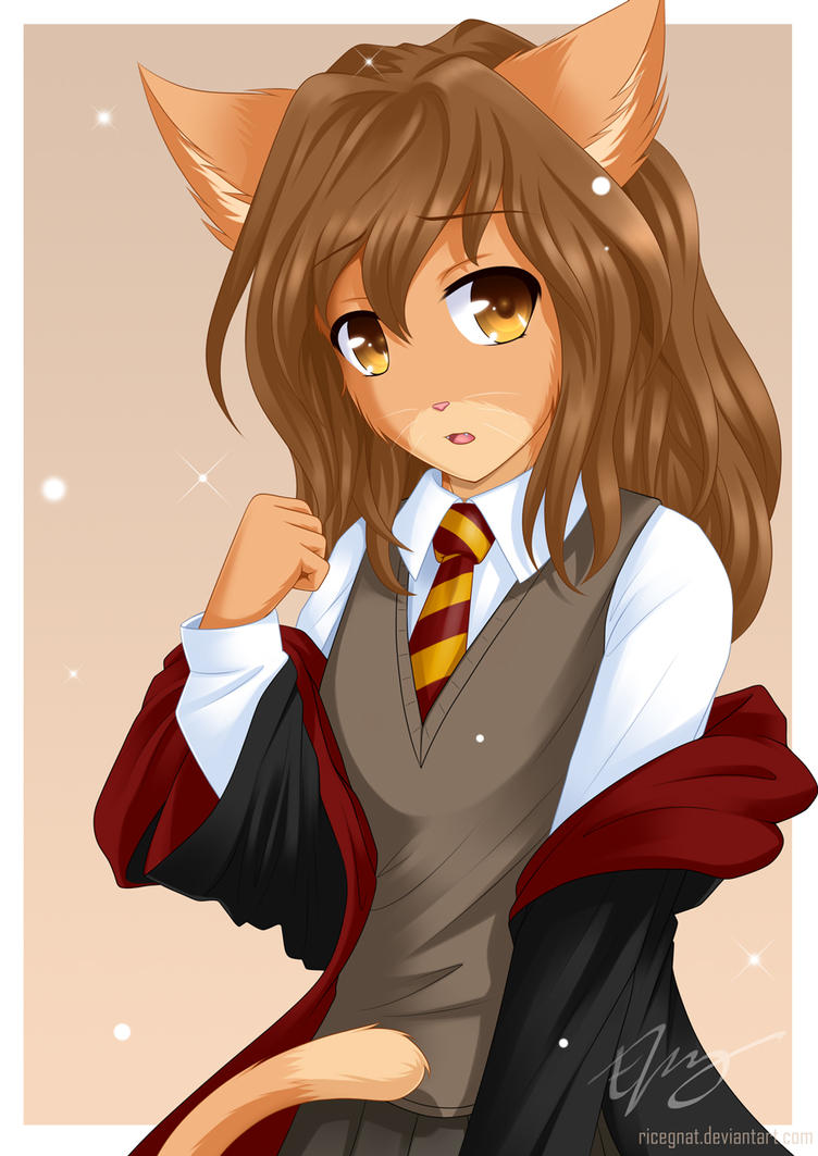 crookshanks 39 fur this time by ricegnat on deviantart