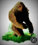 Swamp Monster (Bigfoot, Sasquatch, Skunk Ape)