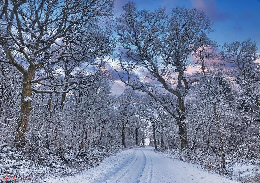 Beautiful Morning in Hampshire