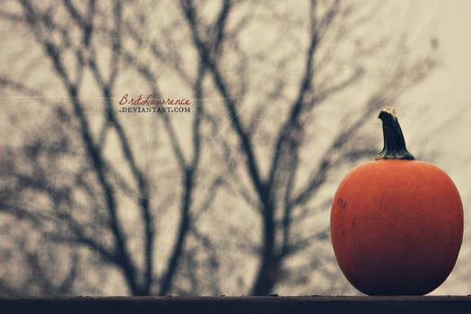 Wicked November