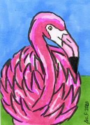 Flamingo 5-2020 by dynakor