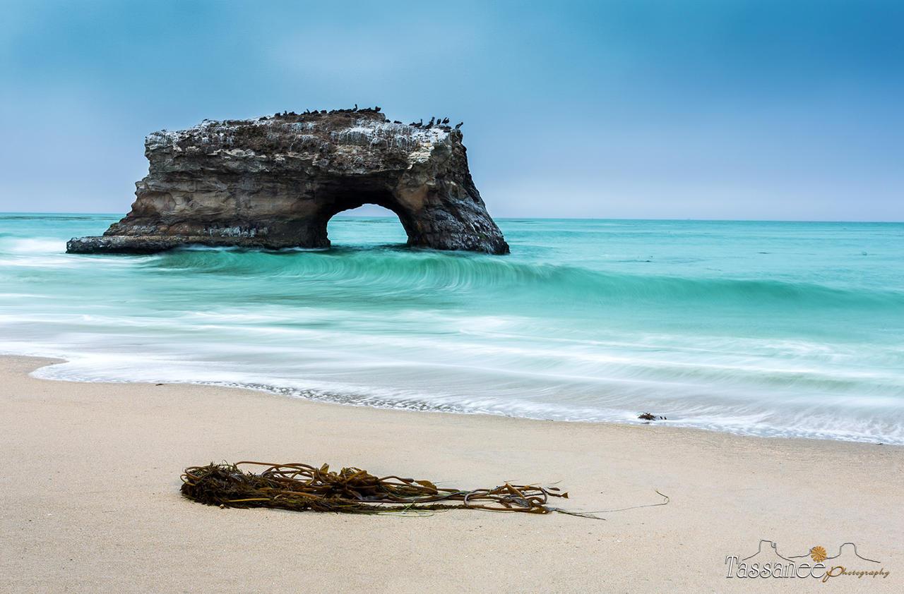 Natural Bridge State Park California