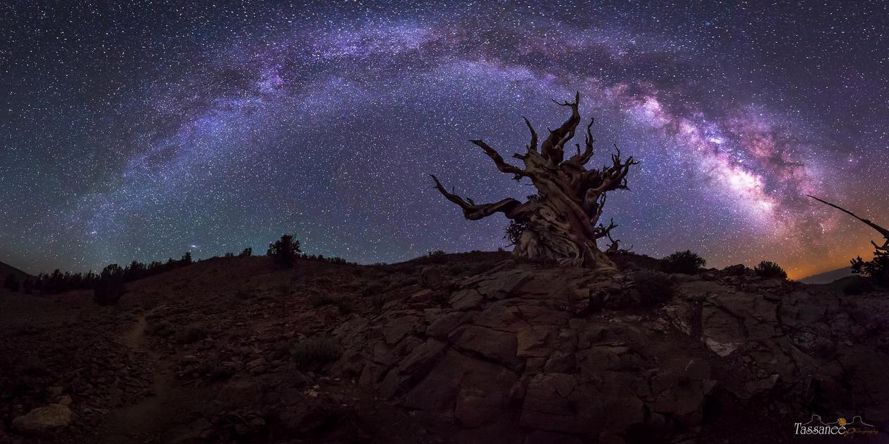 Galactic Keeper by tassanee