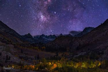 Cosmic Nature by tassanee