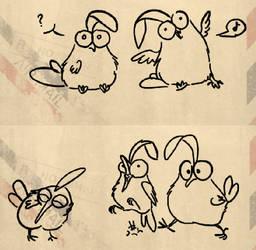 Have also a bunch o birds