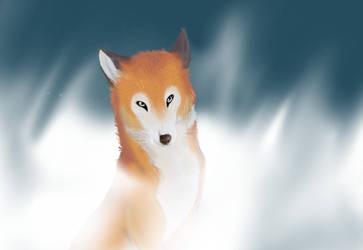 A fox in da mist by sidca