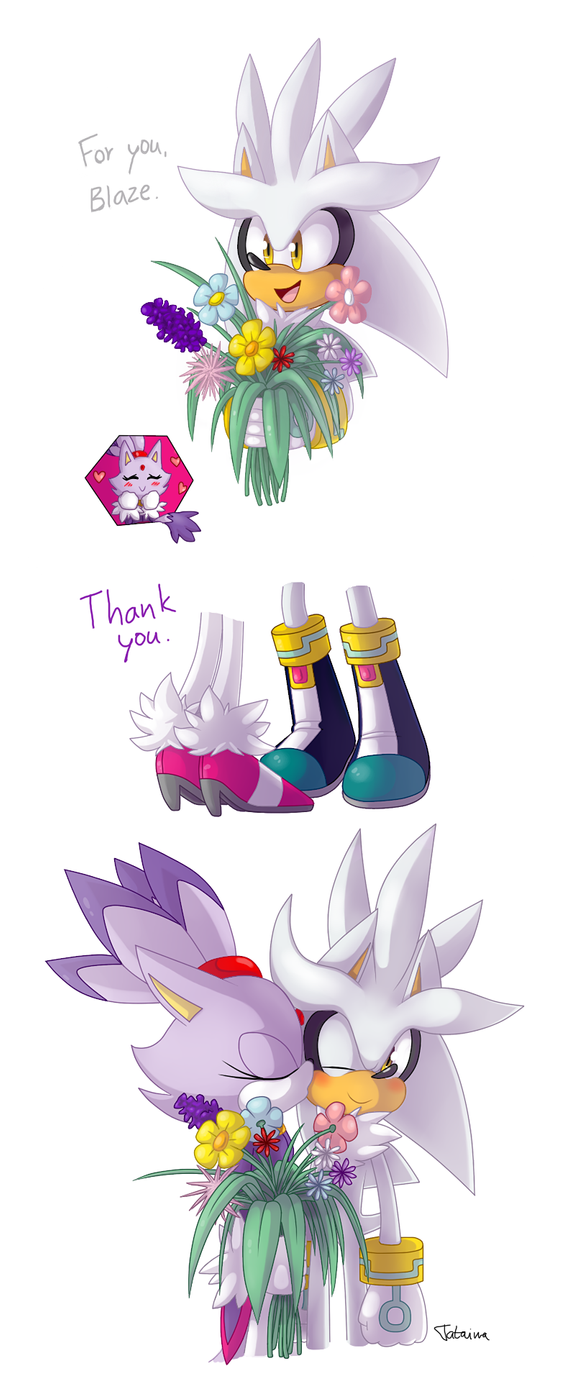 Silvaze: For you by Tataina8