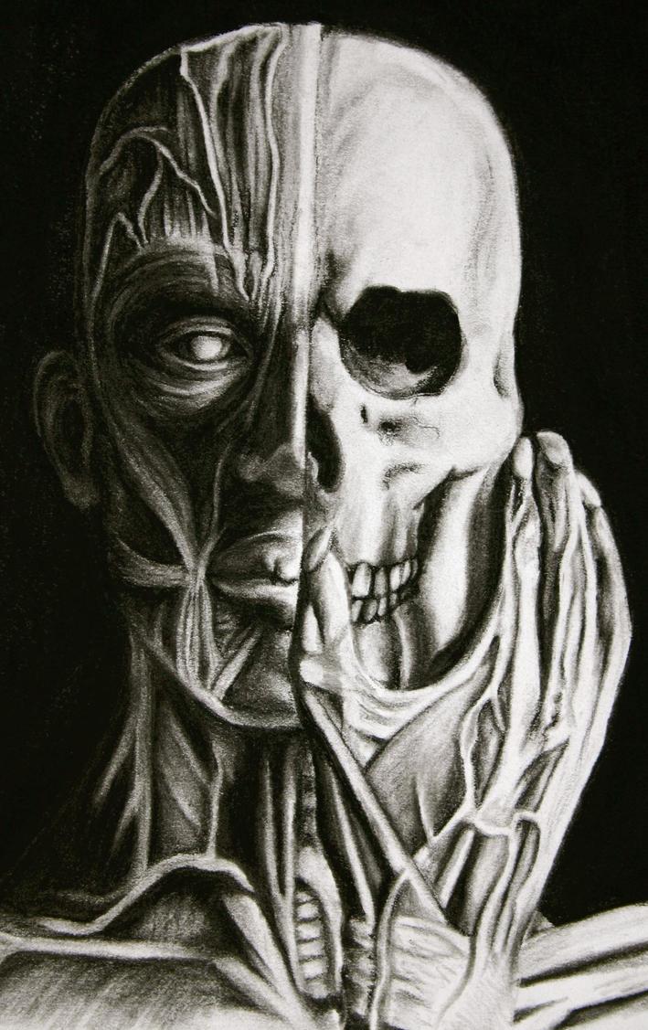 Split Inside Out by darkcutie88