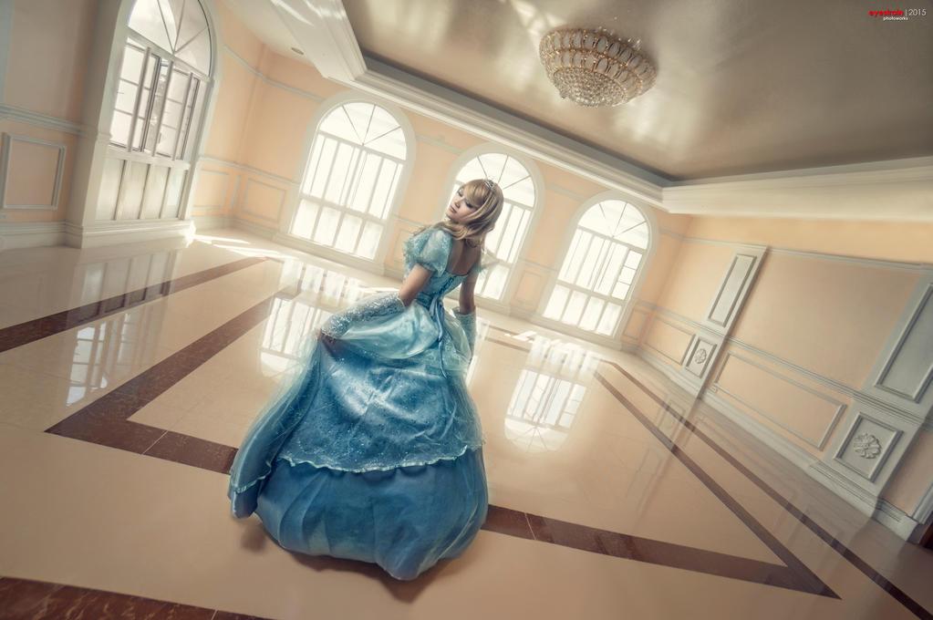 Disney Princess - Cinderella by riskbreaker