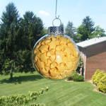 Sunshine Lucky Star Ornament