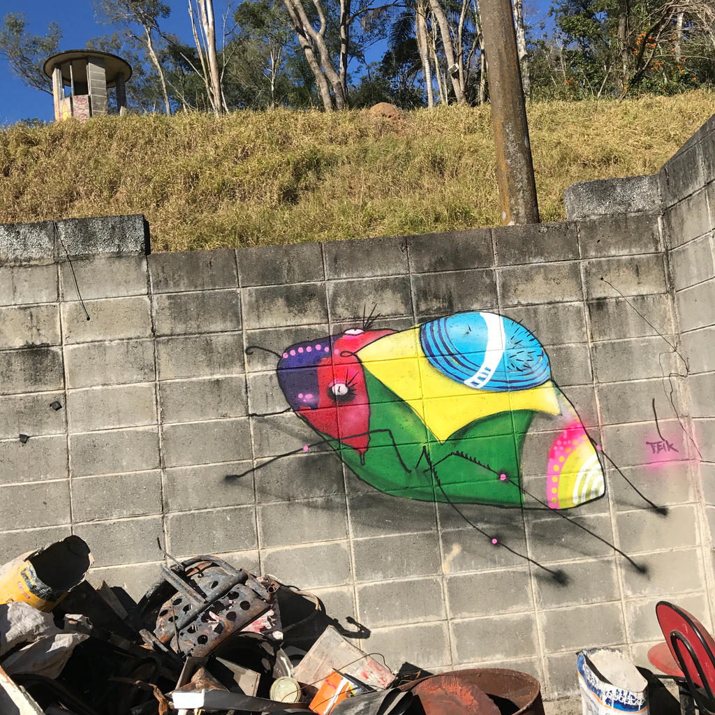 insetos by feik-graffiti