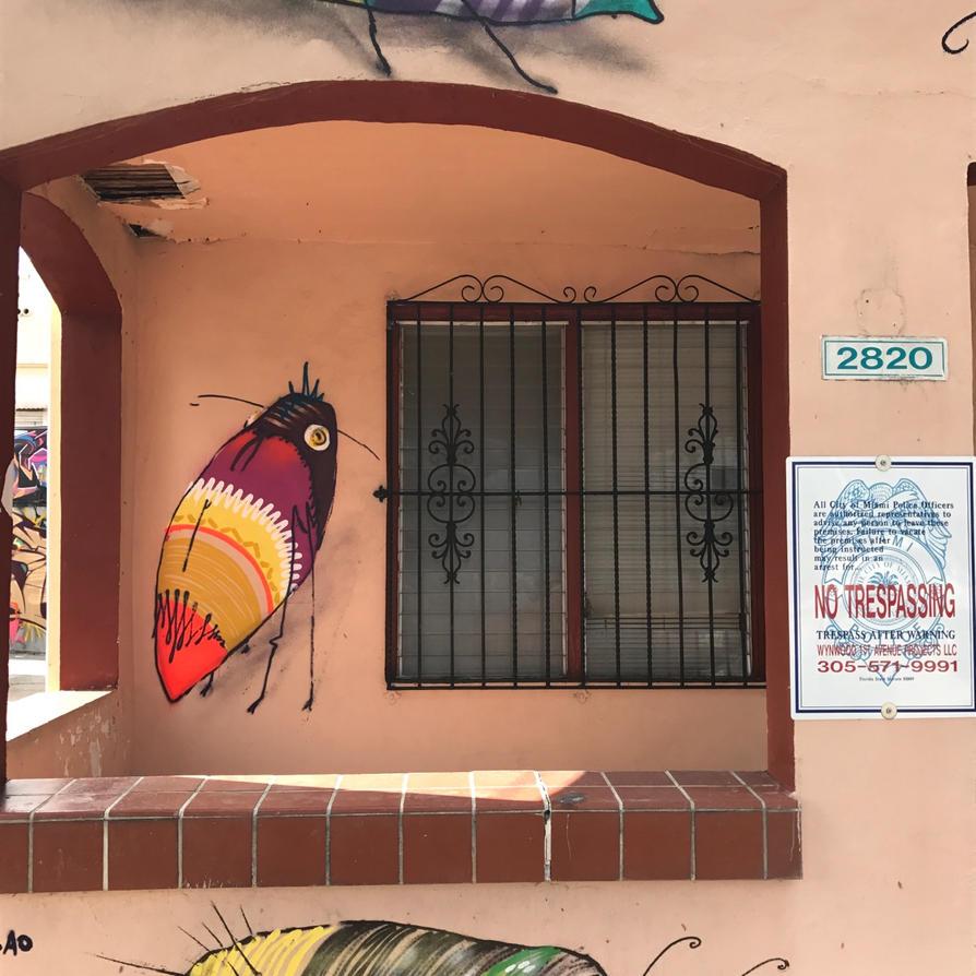 insect by feik-graffiti