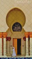 Shaykh Zayd Mosque - Arch