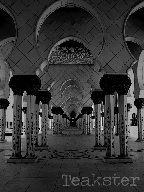 Shaykh Zayd Mosque - Pillars